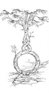 walk-tree-2