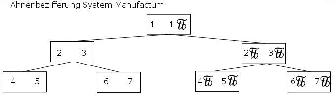 ahnen-bezifferung-manufactum
